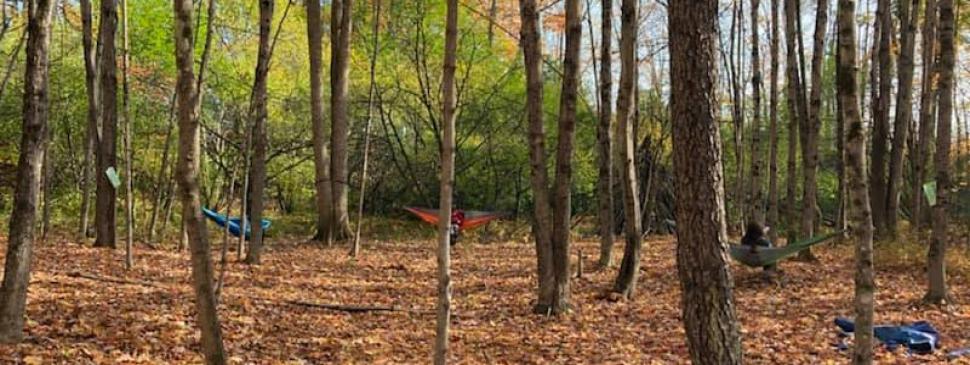 DBS 3rd grade - hammocks.jpg